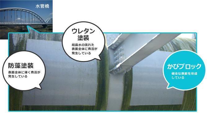 水管橋表面で暴露